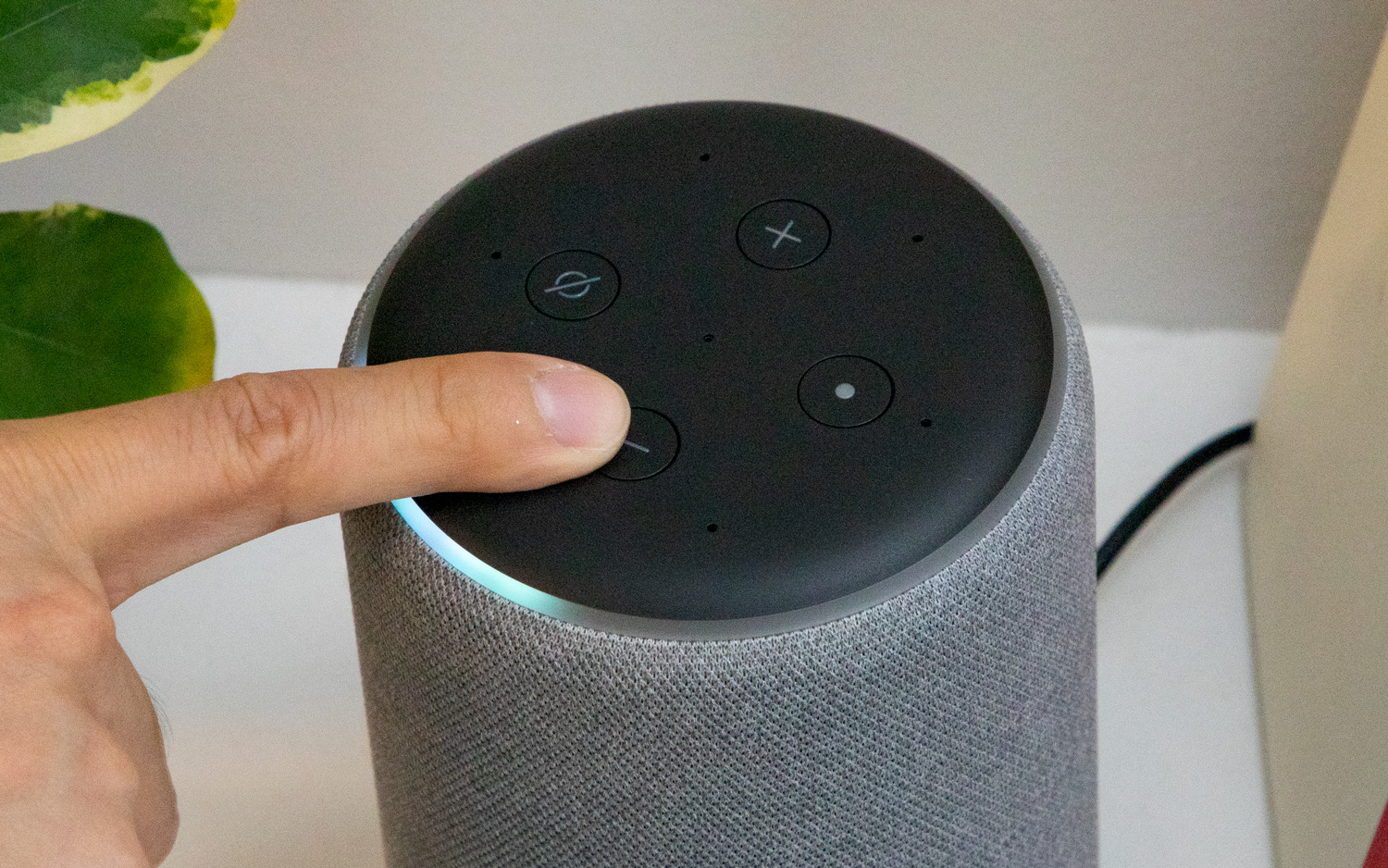 How to play music on alexa for free
