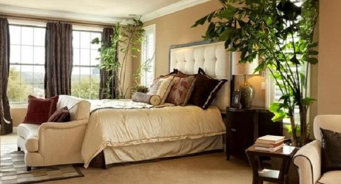 plants in bedroom good or bad