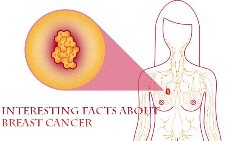 Interesting Facts about Breast Cancer: Breast Cancer Myths and Truths